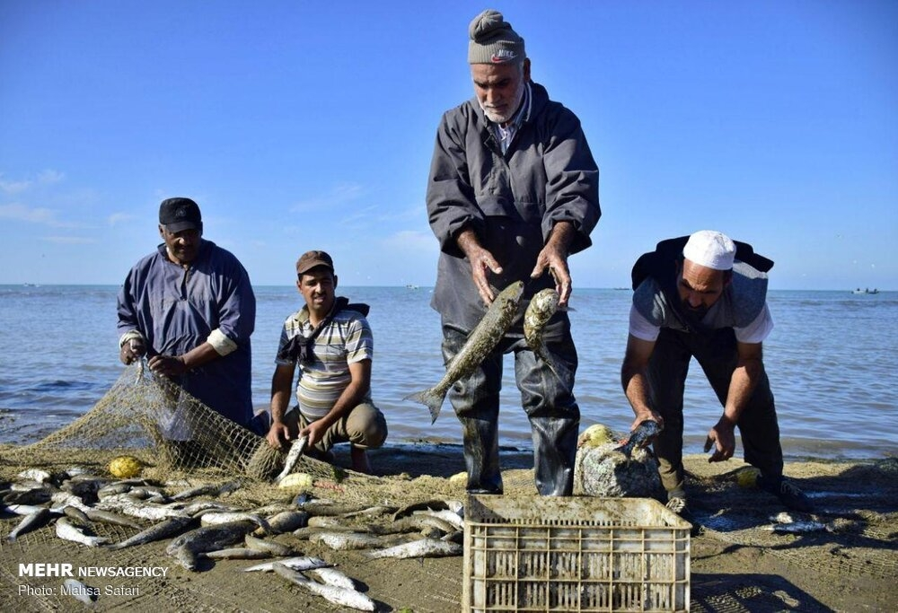 Fishing season begins in the Caspian Sea gallery image 12
