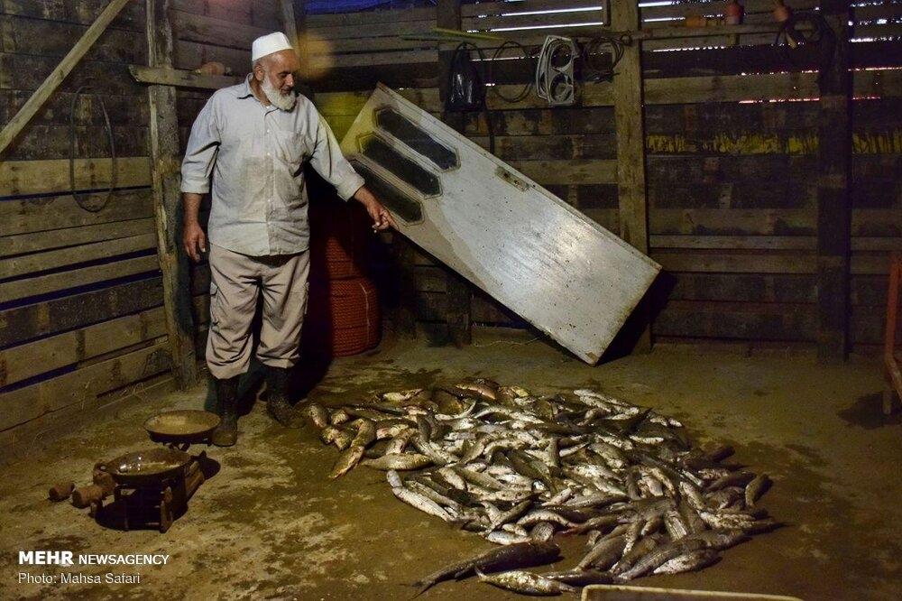Fishing season begins in the Caspian Sea gallery image 17
