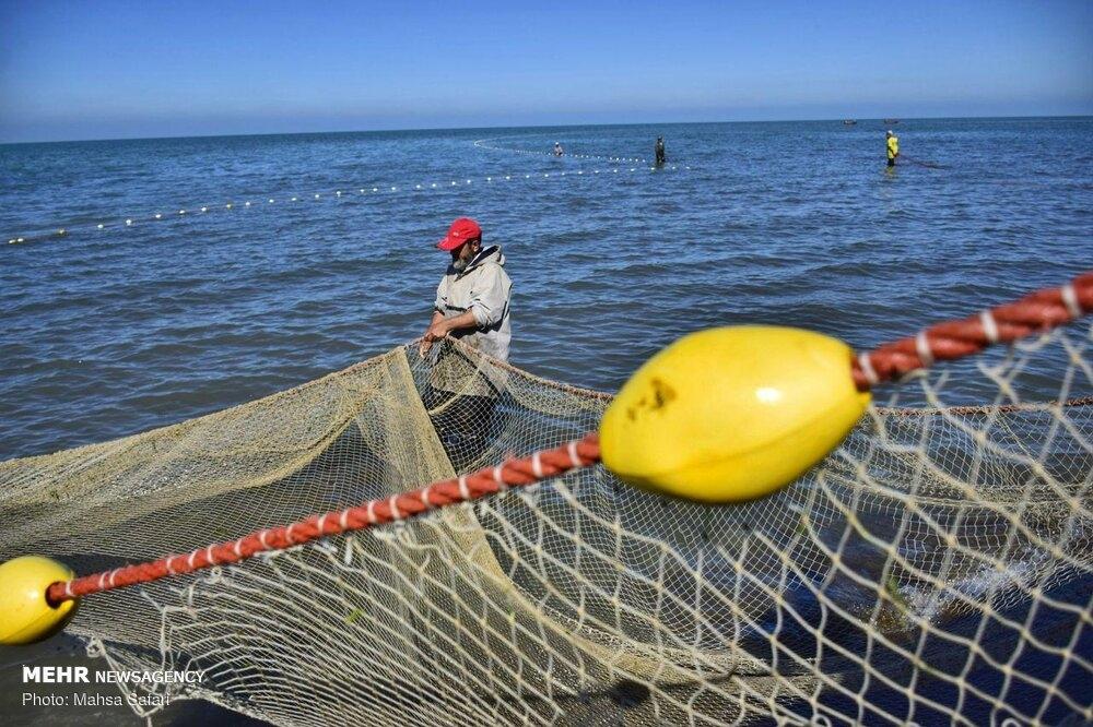 Fishing season begins in the Caspian Sea gallery image 18