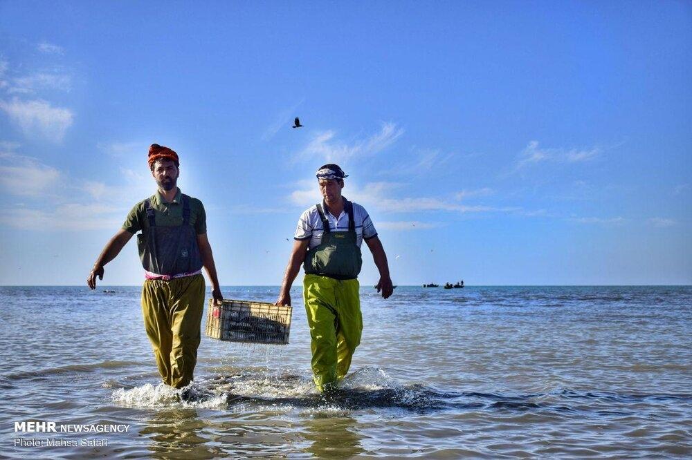 Fishing season begins in the Caspian Sea gallery image 20