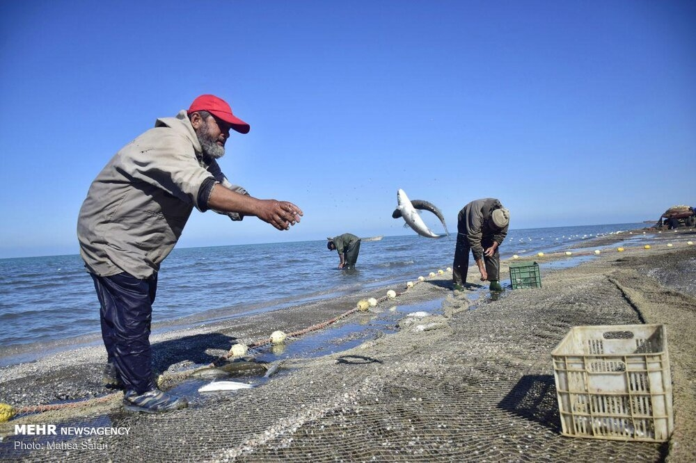 Fishing season begins in the Caspian Sea gallery image 7