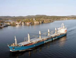 Pacific Basin to acquire vessels