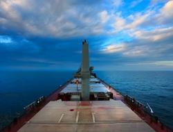 Chartered in 21 dry bulk carrier