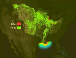 Hypoxic zone in Gulf of Mexico