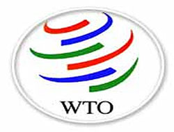 WTO calls for summit
