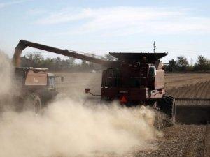 Argentina: Dock Workers End Strike at Major Grain Port
