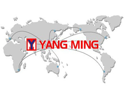 Yang Ming to lay-up boxships