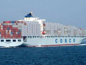 COSCO Swings Back to Profit