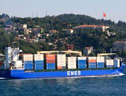 Turkish EMES' rapid rise