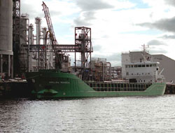 First shipment of Arklow Rainbow