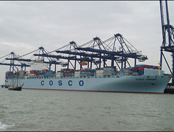 Cosco profits slide