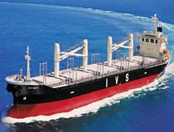 Dry bulk market bounces back