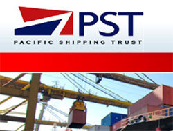 Net profit falls at PST