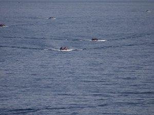 11 migrants killed as boat capsizes off Turkey's Aegean coast