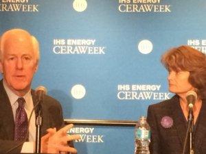 US senators want energy security for allies