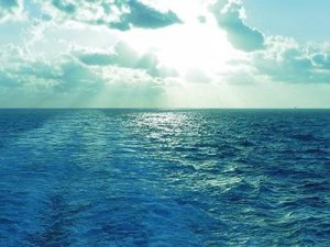 Enhanced safety and efficiency with DNV GL's new survey reporting program