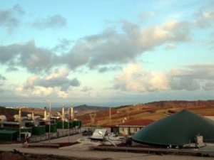 Build of N. Ireland's largest waste energy plant begins
