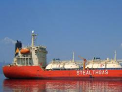 Small gas carrier fleet to grow