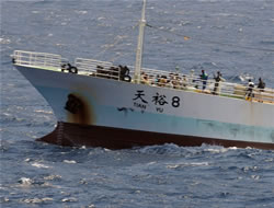 Shipowners must act now
