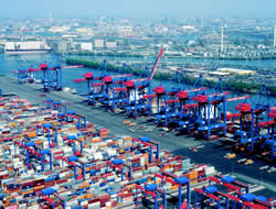 India: Port traffic up 5.5% this year