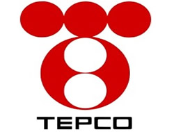 Thermal coal for TEPCO