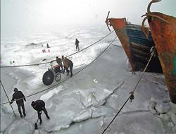 Bohai Bay suffers from sea ice