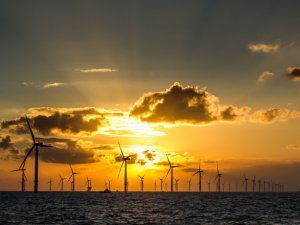 After Brexit Blow, Wind Parks at Sea Undermine Carbon Prices