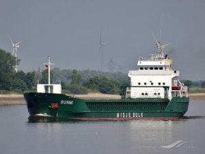 London Ship Pilot Killed in Boarding Accident