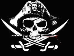 Piracy costs firms over $100m