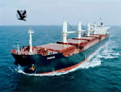 Eagle Bulk takes two newbuildings