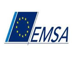 Emsa to solve customs delays