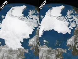 Arctic may become new Singapore