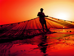 3 Yemeni fishermen killed