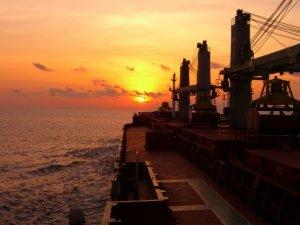 Sri Lanka cement firm doubles fleet size