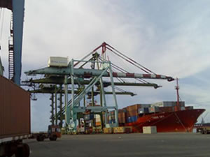 Transhipment facility at Tuticorin port set to ease raw cotton sourcing pressure
