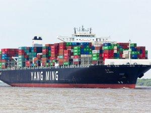 Yang Ming eyes orders for 20 boxships