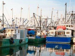 """NOAA Shuts Down 22 Fishing Boats over """"Codfather"""" Scandal"""