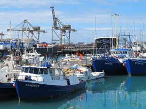 Conserving the Pacific's Fish Stocks