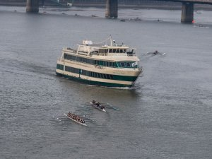 Captain's License Suspended After Rowboat Run-in