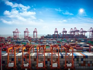 Trade growth drives up Shanghai Port profits