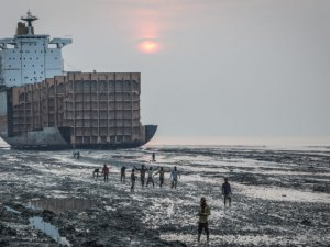 Court Finds Dutch Shipping Company Illegally Sent Ships to India for Demolition