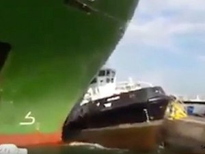 Car Carrier Crunches Tugboat in Durban Harbour