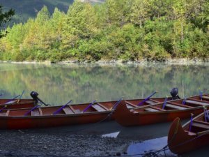 Cruiser Dies During Canoe Excursion in Haines