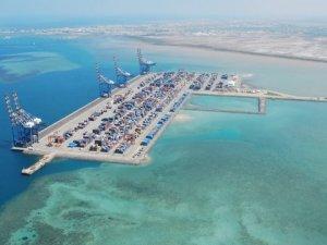 Djibouti Government Nationalizes Port Company