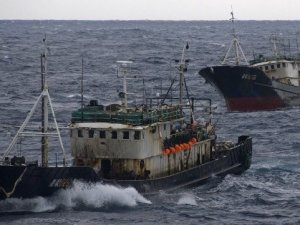 China Cracks Down on Illegal Fishing in Distant Water Fleet