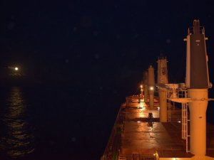Drewry: Large Bulkers to Benefit from Indonesia's Exports Ban