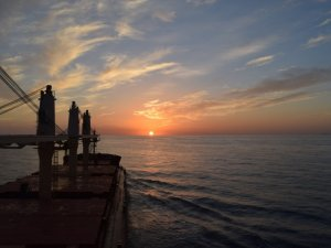 Intercargo: 2020 Still Dominates Dry Bulk Shipping's Challenges