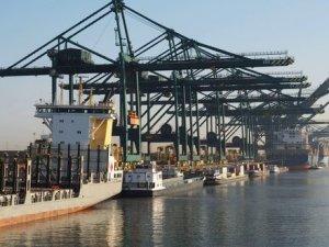 Antwerp sees increased box volumes