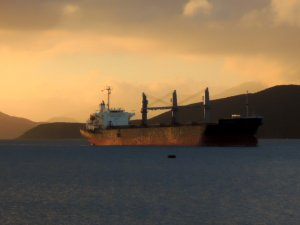 2020 Bulkers Secures Charter for Sixth Newcastlemax Newbuild