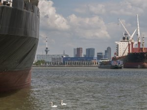 Port of Rotterdam Points to Dramatic Rise in Sale of Low-Sulphur Bunker Oil